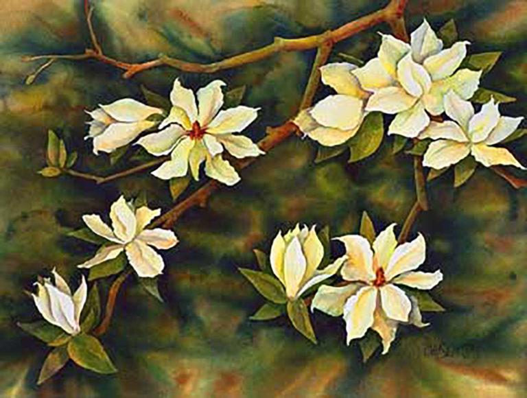 AM Stockhill, Magnolias, watercolor