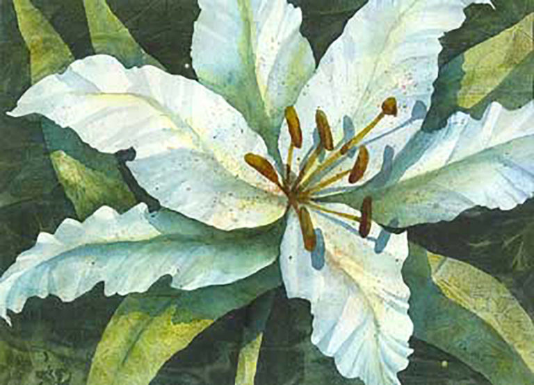 AM Stockhill, White Flower, watercolor